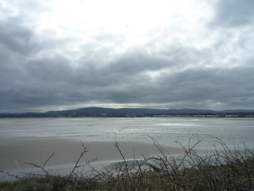 Dublin Beach Walk